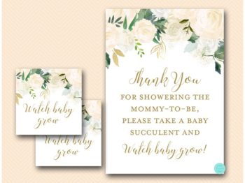 tlc530-blush-floral-watch-baby-grow-succulent-baby-shower-favors