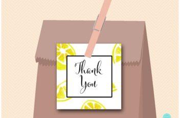 sn455-square-tags-lemon-citrus-bridal-shower-favors-lemonade