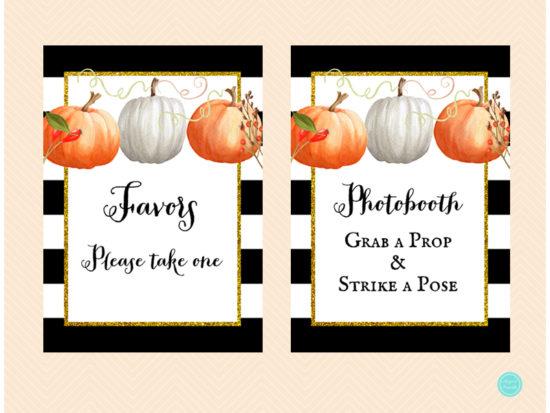 tlc463-sign-card-gifts-pumpkin-baby-shower-autumn-fall