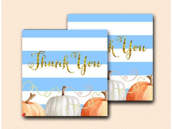 modern-little-pumpkin-baby-shower-favors-thank-you-tags-blue