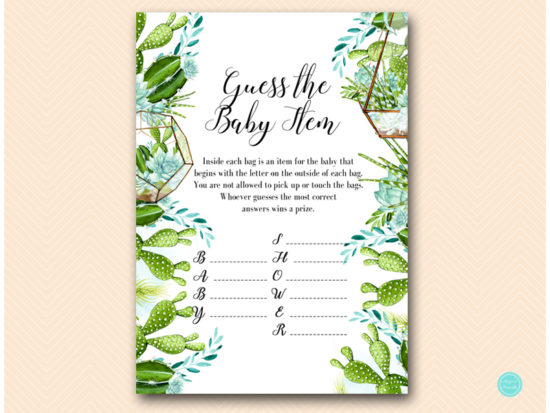 tlc519-guess-the-baby-item-succulent-baby-shower-game