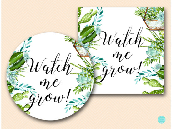 sn519-2-inches-watch-me-grow-succulent-baby-shower-favor-tags