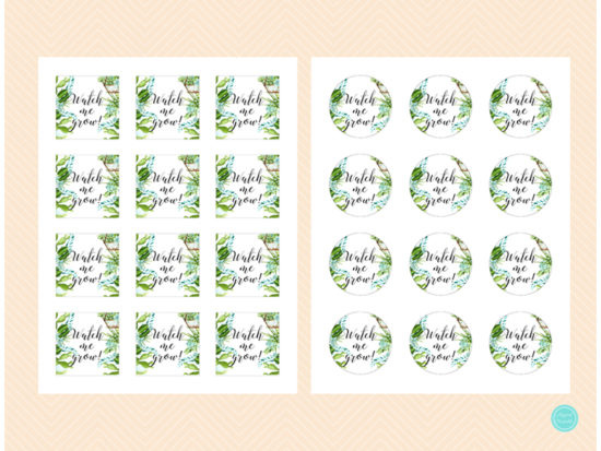 sn519-2-inches-watch-me-grow-succulent-baby-shower-favor-tags-download