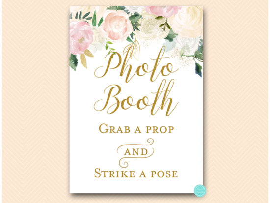 bs530p-sign-photobooth-pink-blush-party-table-signs