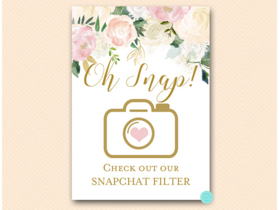 bs530p-sign-snapchat-filter-pink-blush-party-table-signs