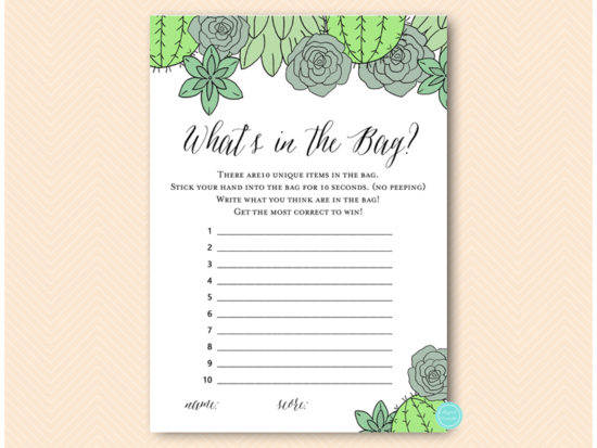 bs597-whats-in-bag-succulent-bridal-shower
