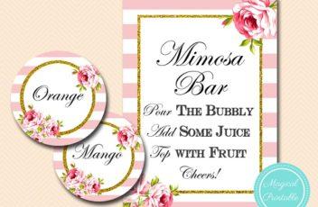 bs11-mimosa-bar-pink-and-gold-mimosa-bar-sign