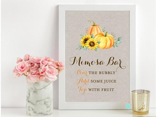 sn681-mimosa-bar-sunflower-pumpkin-theme