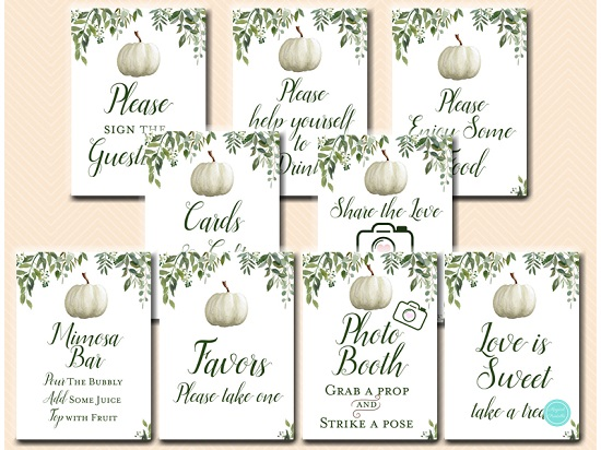 little-pumpkin-baby-shower-table-signs