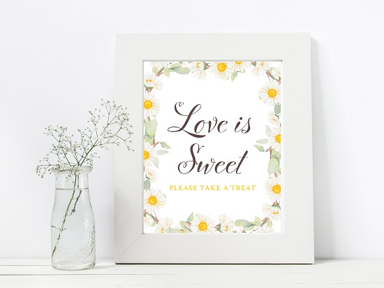 sn691-love-is-sweet-spring-daisy-themed-table-signs