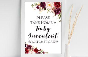 boho-succulent-baby